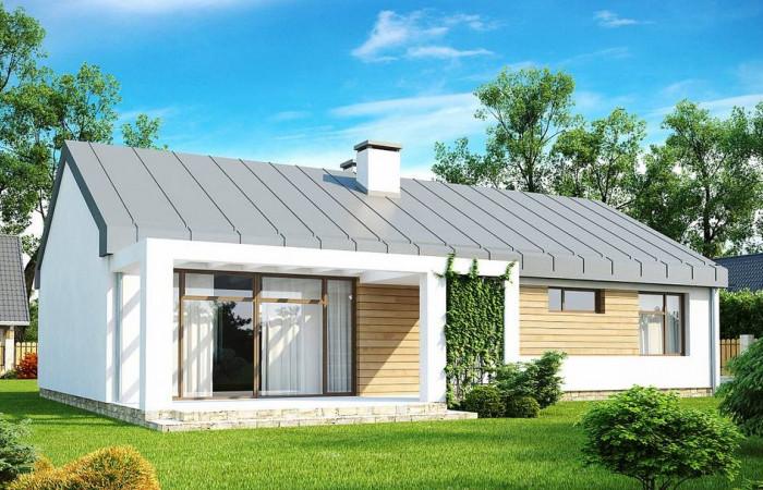 Zx17 - Функциональный одноэтажный дом в современном стиле с двускатной крышей.