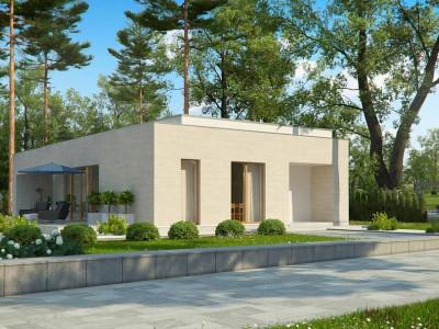 Zx67 - Одноэтажный дом в современном стиле, с большими застекленными окнами
