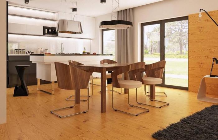 Zx100 - Одноэтажный дом модернистского характера с гаражом для двух автомобилей.