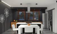 Zx102 - Комфортный одноэтажный дом в современном стиле с гаражом для двух авто.