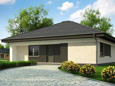 Z332 D - Проект компактного и функционального одноэтажного дома