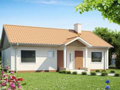 Z91 - Одноэтажный дом простой формы с двускатной крышей